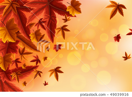 Background design with orange leaves 49039916
