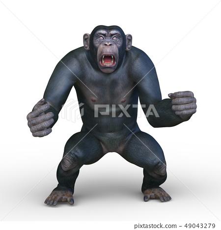 一隻猴子 49043279
