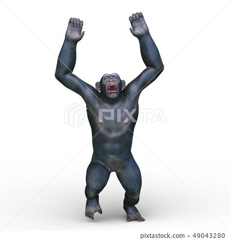 monkey 49043280