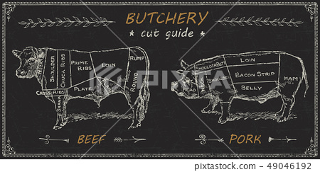 Butchers meat cuts chart engraved diagram 49046192