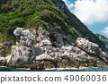 View from the boat on Capri island coast. Italy. 49060036