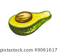 Avocado painting.Painted with watercolor. 49061617