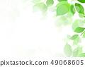 新的綠色葉子綠色背景 49068605