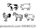 가축 흑백 49086329