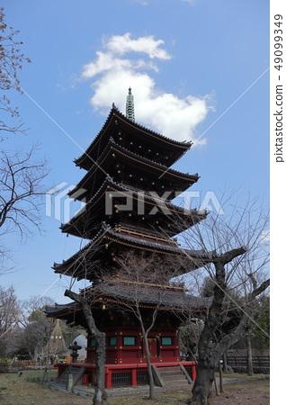 일본 우에노 공원의 풍경 49099349
