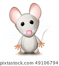 Little gray mouse 49106794
