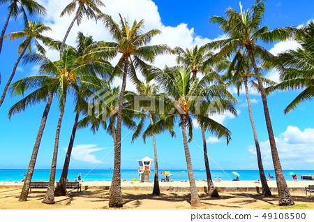 와이키키 (하와이 이미지) 49108500