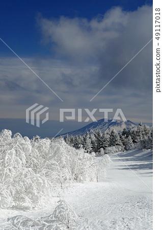 Palcall Tsumagoi Resort-Prestressed冰雪道和淺間山(2) 49117018