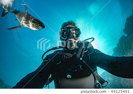 Underwater selfie with great white shark ready to 49125491