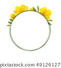 凍結花卉框架。 49126127