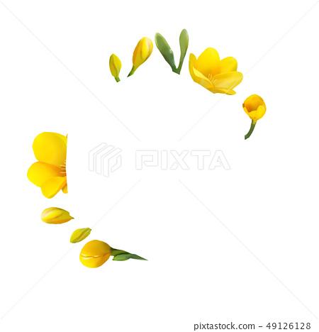凍結花卉框架。 49126128