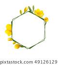 凍結花卉框架。 49126129
