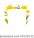 凍結花卉框架。 49126132