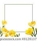 凍結花卉框架。 49126137