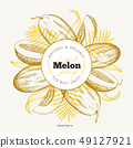 Whole melon and a pieces of melon design template. 49127921