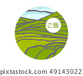 Rice on cascades field. Rice title on Japanese 49143022