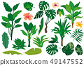 Set of tropical plants. 49147552