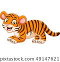 Cartoon funny baby tiger 49147621