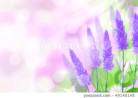 淡紫色花草本背景 49148148
