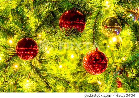 聖誕樹,冬天圖像 49150404