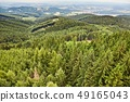 Forest Landscape in the Hills 49165043