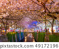 观赏在晚上的樱花在Meguro河,樱花树行沿Meguro河的,打开 49172196