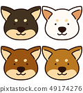 Shiba Inu set 49174276