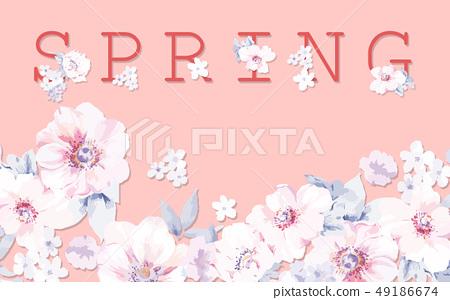 우아한 장미 꽃 49186674