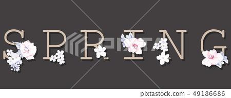 優雅的玫瑰花花卉 49186686