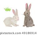 rabbit / watercolor 49186914