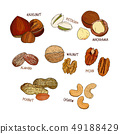Nuts collection. Vector Hand drawn sketch objects 49188429