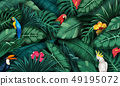 Tropical plants and birds collection set 49195072