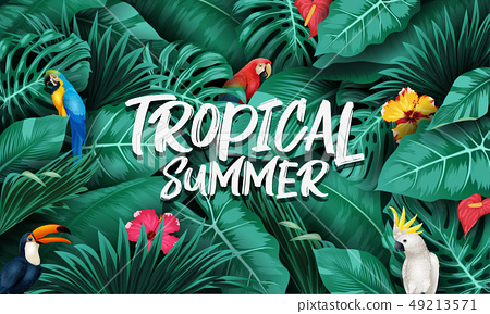 Tropical plants and birds collection set 49213571