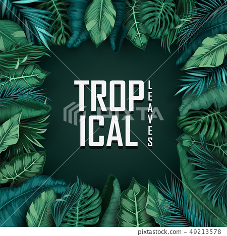 Tropical Leaves Isolated On Black Background Stock Illustration 49213578 Pixta Download a free preview or high quality adobe illustrator ai, eps, pdf and high resolution jpeg versions. https www pixtastock com illustration 49213578
