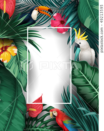 Birds collection and tropical plants background 49213595