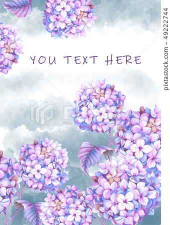 紫色的水彩繡球花花卉 49222744
