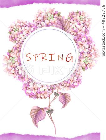 紫色的水彩繡球花花卉 49222756