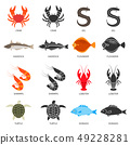 Seafood and fish icons set with two types of vector illustrations 49228281