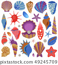 Sea Shells and Starfishes Collection Set 49245709