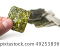 closeup of algae chips in shaped square in hand  49253836