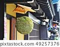 Cedars of Hidatakayama 49257376