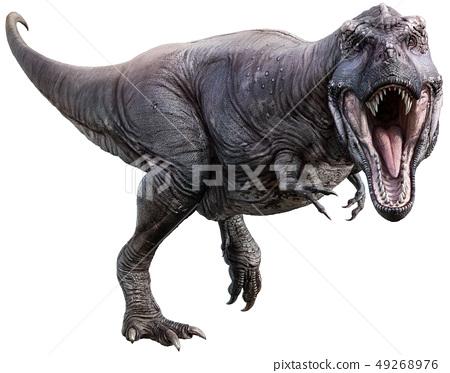 Tyrannosaurus 3D illustration 49268976