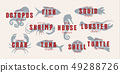 Seafood vintage logo set. Sea creatures, fishing or restaurant emblems. Retro style logo template 49288726