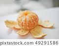 被剝皮的橙色perming股票照片 -  photolibrary 49291586