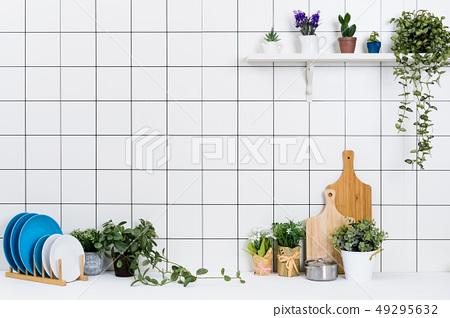 다양한 주방용품과 작은 화분 배경 49295632