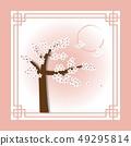 ซากุระ,ฤดูใบไม้ผลิ,สปริง 49295814