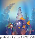 Underwater Life 49296550