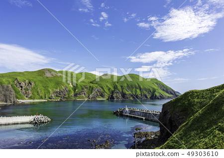 禮文島和港口在夏天 49303610