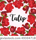 Red tulip flowers background. 49304718