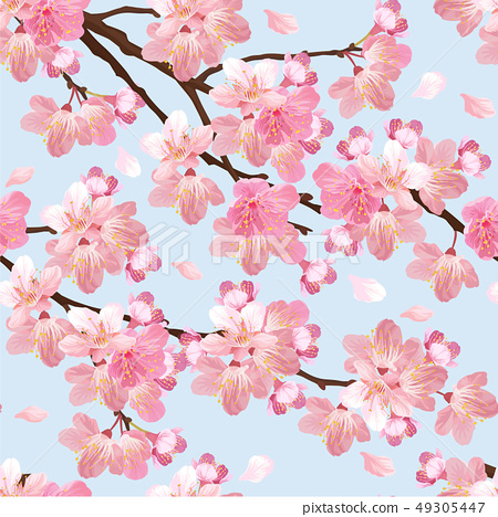 Seamless sakura flowers background template. 49305447